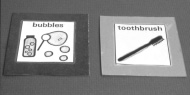 photograph of two cards.  The first card says 'bubbles' and contains a drawing of a bottle of bubbles and a wand blowing bubbles.  The second card says 'toothbrush' and contains a drawing of a toothbrush.